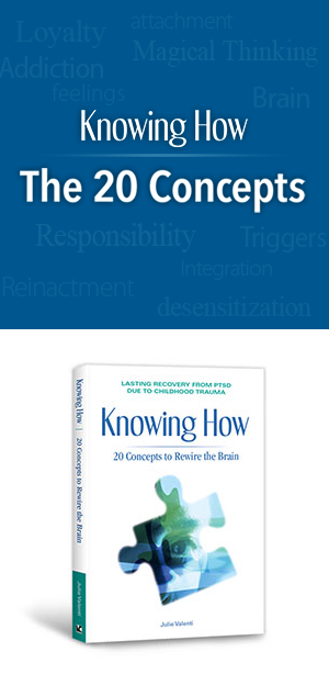 20 concepts Knowing How book